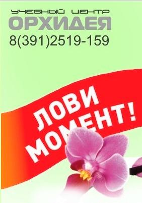 Продвижение сайта, для учебного центра Орхидея в ТОП-5
